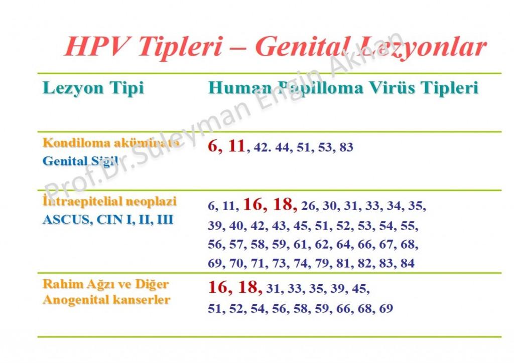 HPV Tipleri ve Hastalıklar