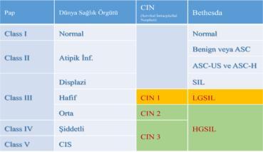 Rahim Ağzı Kanseri Öncülleri (ASCUS, CIN I, CIN 2,CIN 3, İnSitu Serviks Kanseri)