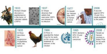 Tarihçe: Genital Siğil ve Tarihte HPV'nin neden olduğu diğer hastalıklar